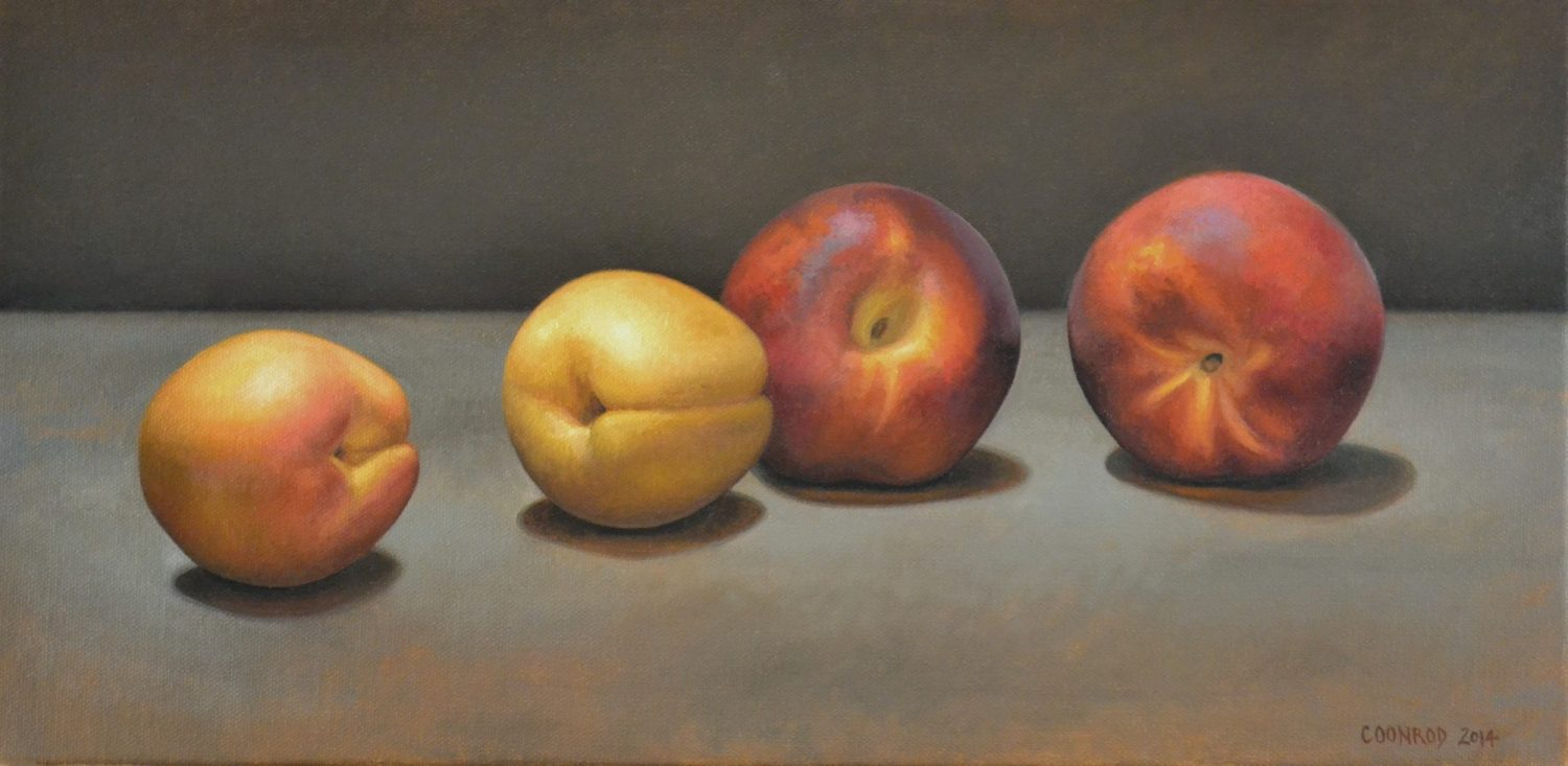 2 Apricots and 2 Peaches 10″ x 20″ sold