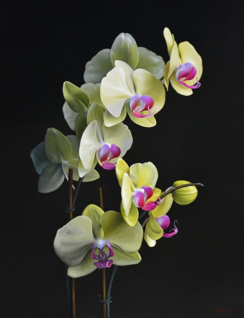 """Orchid 18"""" x 14"""" sold"""